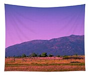Late Afternoon In Taos Tapestry
