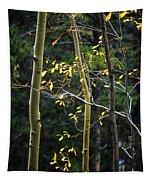 Late Aspen Tapestry