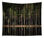 Late Loons Tapestry