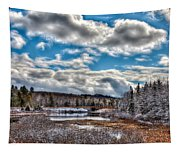 Late Winter At The Tobie Trail Bridge Tapestry