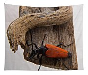 Laughing Beetle Tapestry