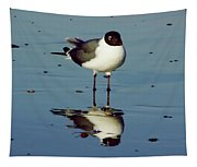 Laughing Gull Tapestry