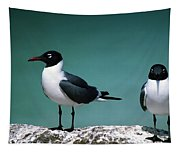 Laughing Gulls Tapestry