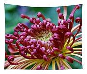 Lava Chrysanthemum Tapestry