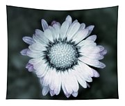 Lawn Daisy - Toned Tapestry