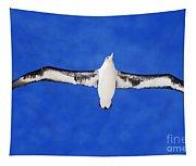 Laysan Albatross Tapestry