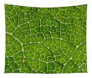 Leaf Veins Tapestry