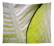 Leaves In White Tapestry