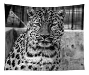 Leopard Tapestry