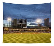 Let's Play Ball  Tapestry