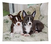 Lexi And Gracie Tapestry