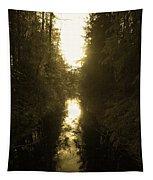 Liesijoki 3 Tapestry