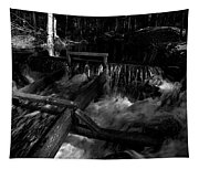 Liesijoki In Bw Tapestry