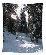 Light And Shadow On A Snowy Landscape Tapestry