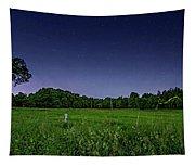 Light Show - Fireflies Vs The Stars Tapestry