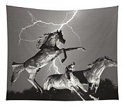 Lightning At Horse World Tapestry