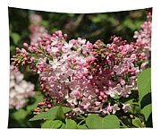 Lilac Pink Tapestry