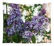 Lilacs In Spring Tapestry