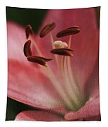 Lilly Pink Craquelure Tapestry