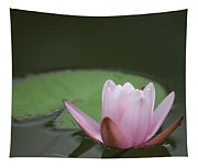 Lily And Pad Tapestry