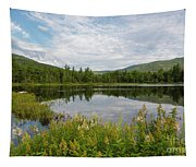 Lily Pond - White Mountains, New Hampshire Tapestry