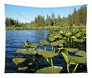 Lilypads On Amber Lake Tapestry