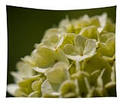 Lime Hydrangea Tapestry