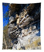 Limestone Cliff Tapestry