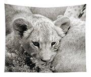 Lion Cub Tapestry
