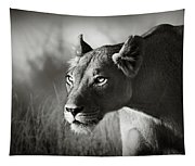 Lioness Stalking Tapestry