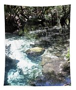 Lithia Springs Tapestry