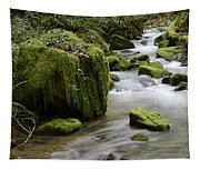 Little Creek 5 Tapestry