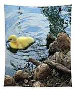 Little Ducky Tapestry
