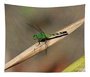 Little Green Friend Tapestry