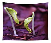 Little Green Sprouts  Tapestry