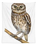 Little Owl Or Minerva's Owl Athene Noctua - Goddess Of Wisdom- Chouette Cheveche- Nationalpark Eifel Tapestry