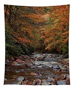 Little Pigeon River In Autumn Tapestry