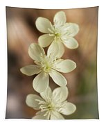 Little White Wildflowers  Tapestry