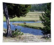Live Dream Own Yellowstone Park Elk Herd Text Tapestry