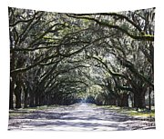 Live Oak Lane In Savannah Tapestry
