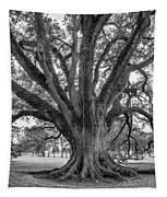 Living History Bw Tapestry