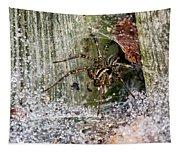 Lobo's Web Tapestry