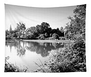 Lodi Pig Lake Reflections B And W Tapestry
