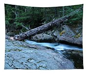 Log Over Deep Creek Tapestry