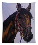 Lone Star Tapestry