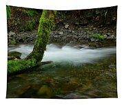 Lone Tree And Running Water Tapestry
