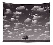 Lone Tree Morning In B And W Tapestry