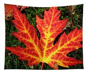 Lonely Leaf ... Tapestry