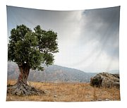 Lonely Olive Tree And Stormy Cloudy Sky Tapestry