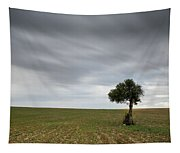 Lonely Olive Tree With Moving Clouds Tapestry